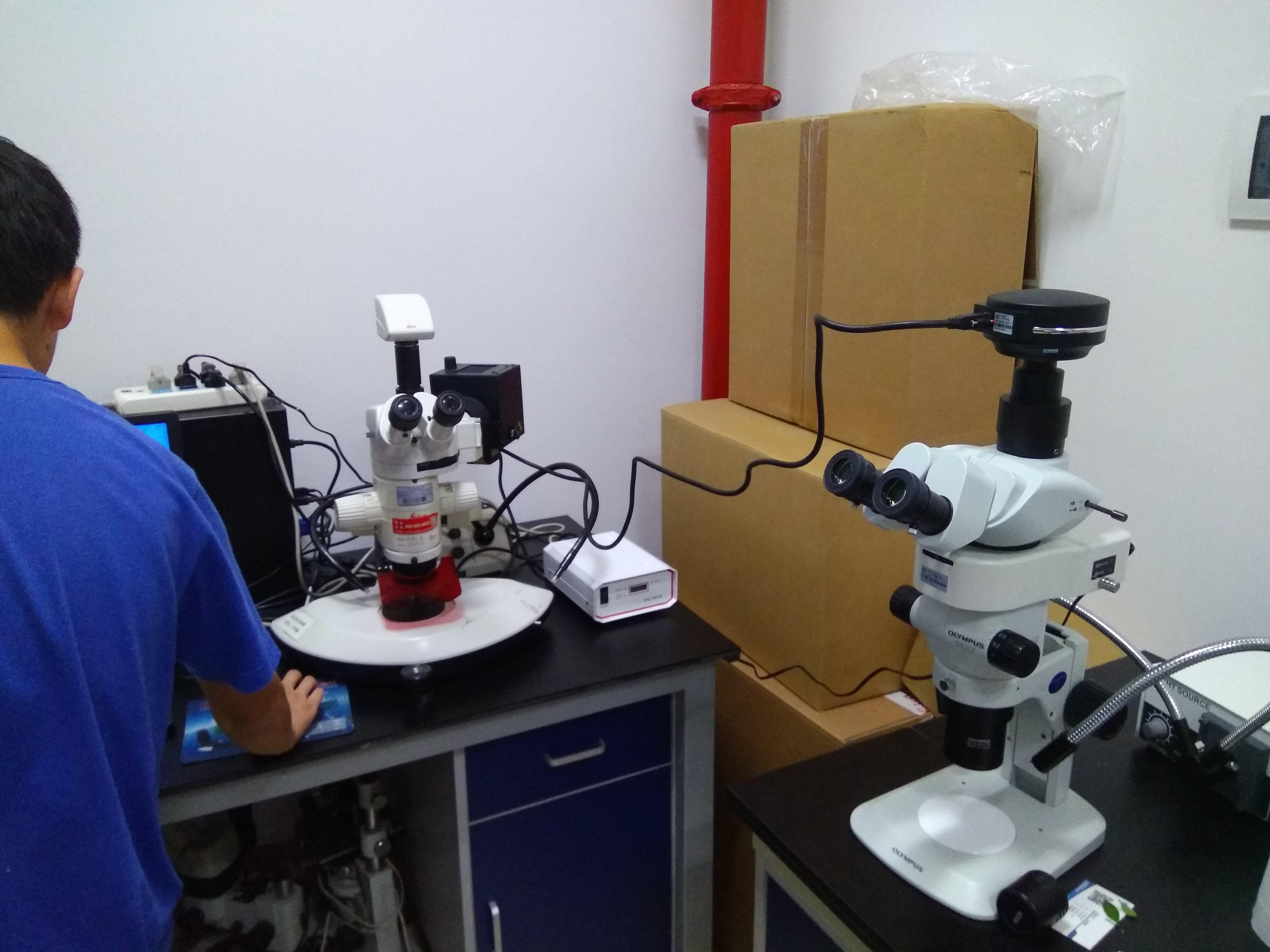 显微镜使用教案