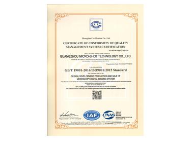 ISO9001:2015英文体系认证