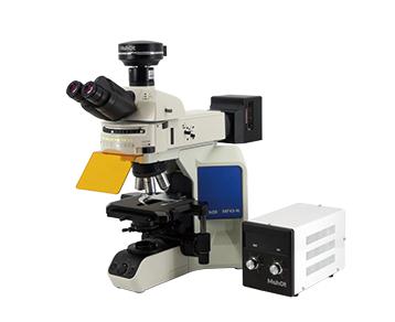 正置荧光显微镜