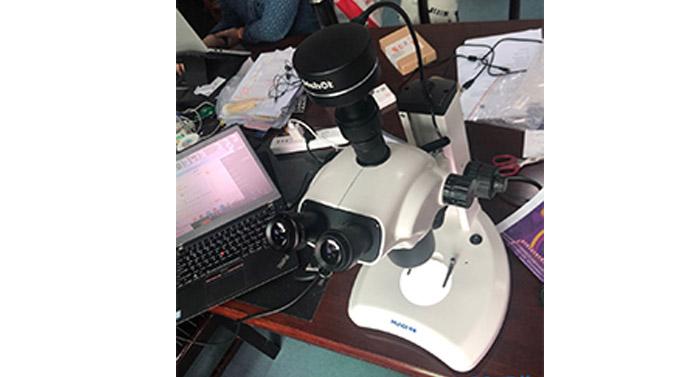 看植物花粉,叶尖等形貌用什么显微镜及显微镜相机