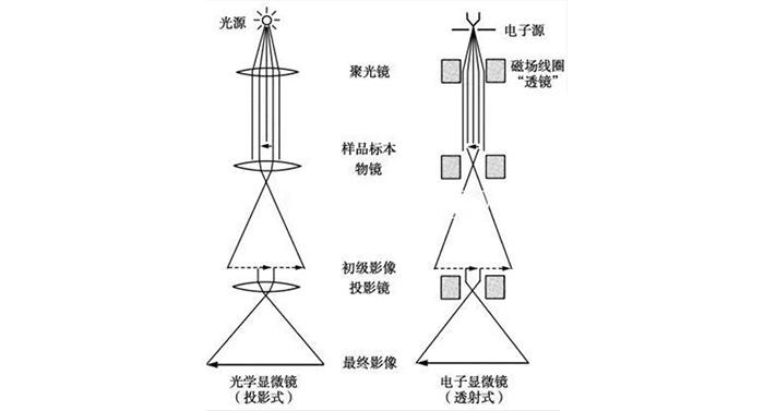 """诺贝尔奖看""""中国被卡脖子的科技"""""""