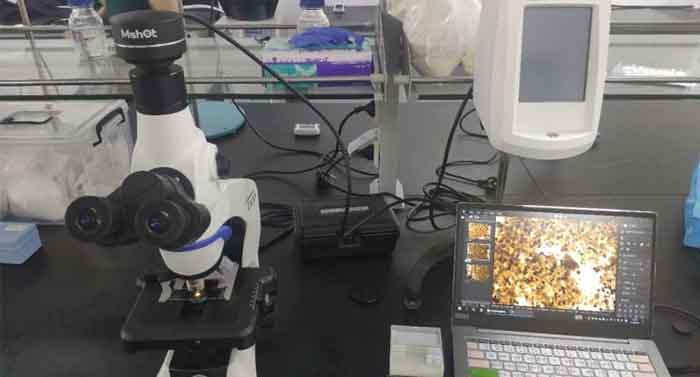 明美显微镜相机应用于乳制品的显微成像