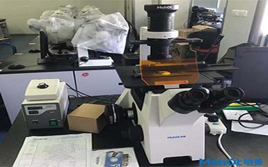 明美倒置荧光显微镜助力华中科技大学活细胞检测.jpg
