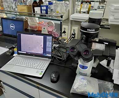 显微镜相机MSX11应用于深圳市第三人民医院肝病研究所活细胞检测1.jpg