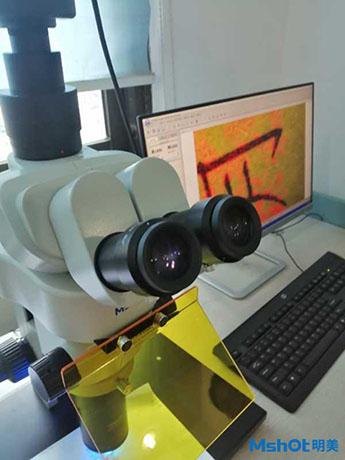 明美体视荧光显微镜应用于朱墨时序鉴定2.jpg