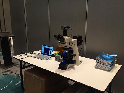 明美FISH成像系统在HER-2诊断中的应用1.jpg