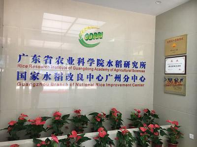 体视显微镜助力广东省农业科学院水稻种子观察1.jpg