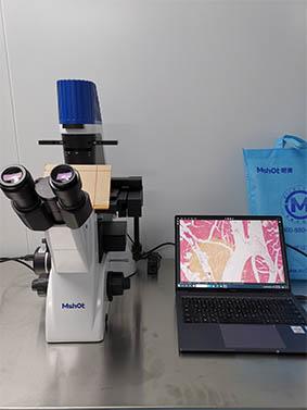 倒置荧光显微镜看细胞.jpg