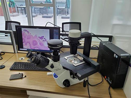 明美显微镜相机用于活体细胞培养