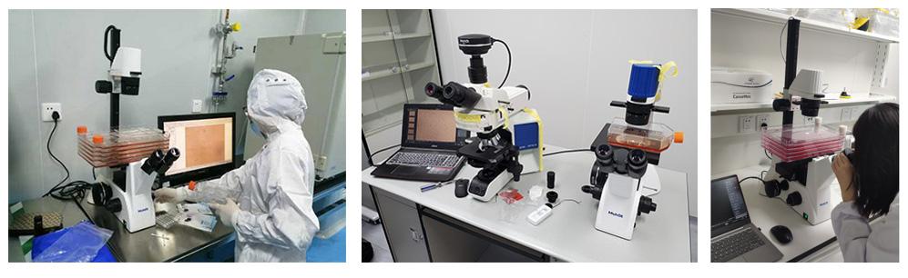 细胞工厂典型案例2.jpg