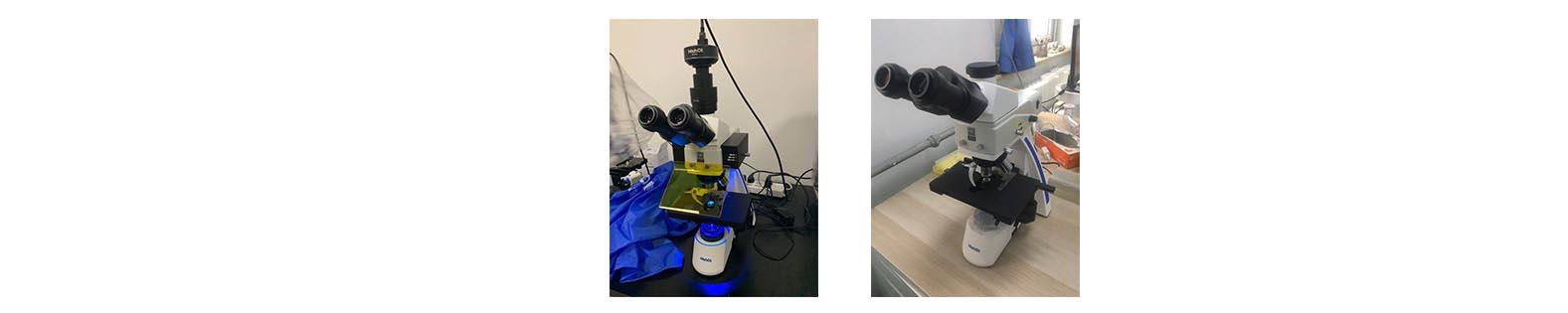 结核显微镜典型案例.jpg