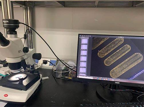 明美显微镜相机助力中山大学金手指-U盘观察