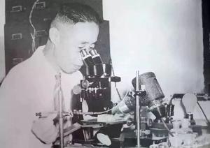 双目显微镜.png