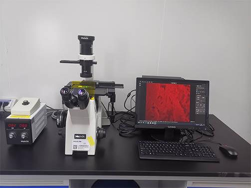 倒置荧光显微镜用于制药.jpg