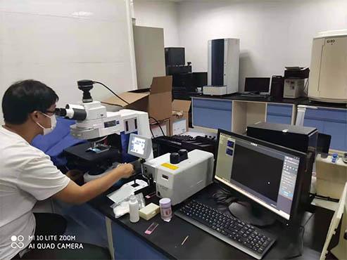 显微镜相机用于真菌检测